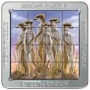 3D Magna Assortment 2 Szurikáta Cheatwell mágneses kirakó